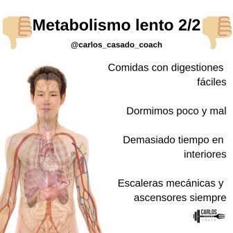estimular tu metabolismo